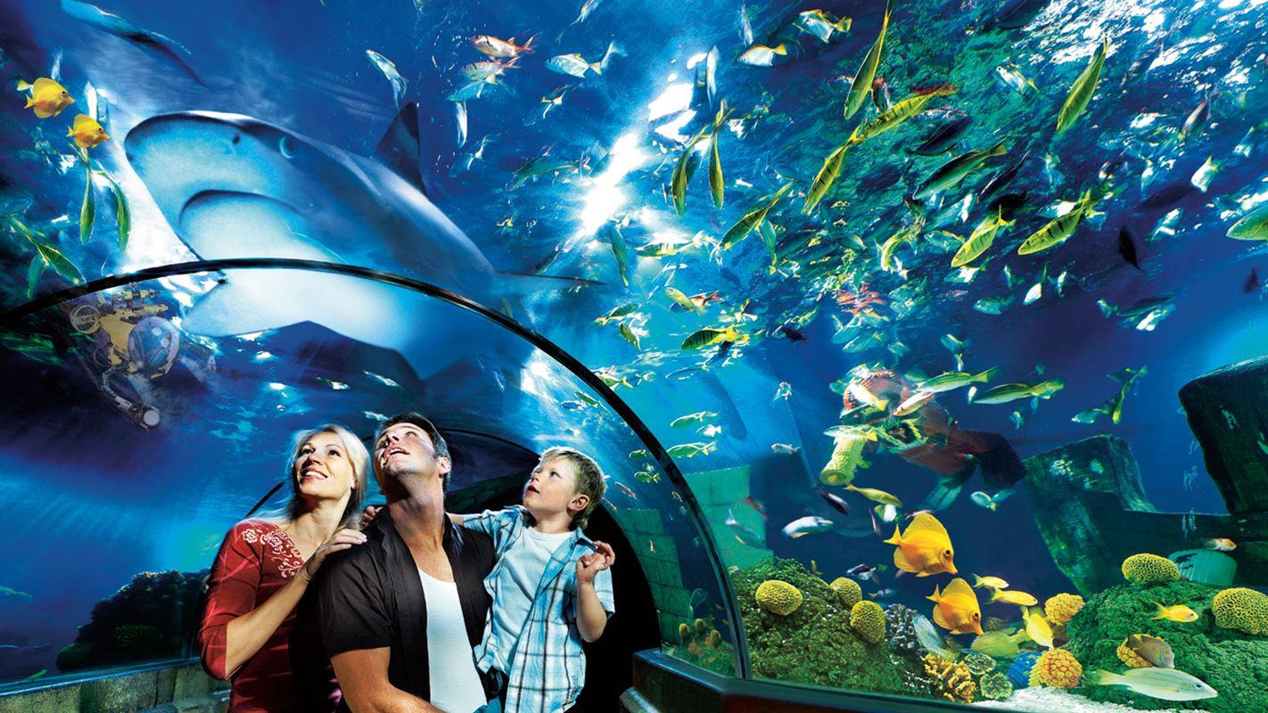 Sea Life, l'acquario di Monaco